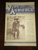 "Revista Portuguesa  Nº 40 Year 1942 ""VIDA AGRICOLA"" Capa, Pastor Dos Hermínios. - Books, Magazines, Comics"