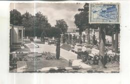 La Ferté Alais, Piscine, Jardin - La Ferte Alais
