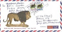 Ethiopia 2015 Civil Service Bushbuck Lion Cat Cover - Ethiopia