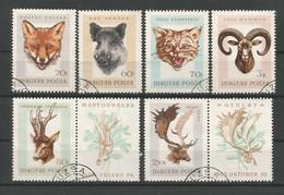 Hungary 1966 Fauna  Y.T.  1843/1851 (0) - Hungary
