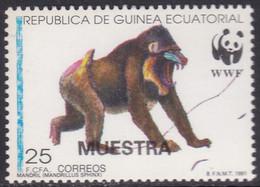 Specimen, Equatorial Guinea Sc162 WWF, World Wildlife Fund, Mandrill, Monkey, Singe - Unused Stamps