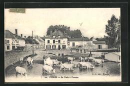 CPA Fismes, Cafe-Restaurant Au Lion D`Or, La Vesle à Fismette - Fismes