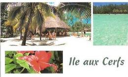 Ile Aux Cerfs - Mauritius