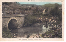 Brenod  Pont De La Scie 333 - Sonstige Gemeinden