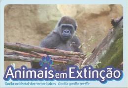 CARTE POSTALE - POSTCARD - POSTKARTE - CARTOLINA POSTA - PORTUGAL - ANIMAUX - GORILLE - Gorilla Gorilla Gorilla - Affen