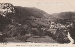 CARTE POSTALE   Environs De SALINS 39  Vallée De Pretin - Sonstige Gemeinden