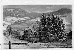 DC4604 - Ak Ottenhöfen Im Schwarzwald, Hotel-Pension Z. Sternen - Other