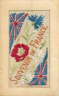 SOUVENIR DE FRANCE - TRES BELLE CARTE BRODEE - ECRITE LE 11 NOVEMBRE 1918 ET ANNONCANT L'ARMISTICE - Bordados