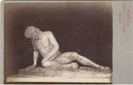 PHOTO/FOTO CDV - ROMA -Statua Maschile  - Ediz. TUMINELLO - Places