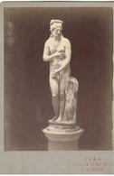 PHOTO/FOTO CDV - ROMA -Statua Femminile  - Ediz. TUMINELLO - Places