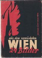 24 Bilder Aus Dem Verwüsteten Wien - Oude Documenten