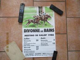 DIVONNE LES BAINS MEETING DE GALOP 1986  60cm/40cm - Affiches