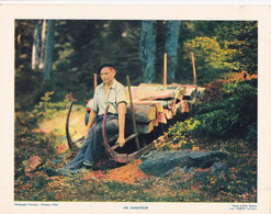 Chromo : Image Pédagogique : France : Vosges : Un SCHLITTEUR : Agriculture - Bois : 27cm X 21cm - Other