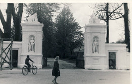 LITHUANIA Plunge - Litauen