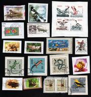 Lot Von Marken Mit 20 Verschiedenen Tieren (Vögel, Echsen, Insekten, Wildtiere) - Ansehen !!! - Autres