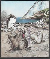 ANTARCTIQUE - CHILI 2000 éléphant De Mer Et Gorfous - Yv. BF63 ** - Non Classés