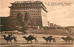 China - Chine - Péking - Tartar City - Camel Caravan , Blockhouse And Wall - N° 75 - China