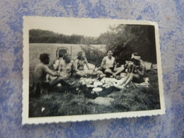 PHOTO ORIGINALE UN GROUPE PIN-UP FEMMES HOMMES TORSE NUS EN MAILLOT DE BAIN   Pique-nique  ANNEE CIRCA 60-70 - Pin-ups