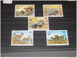 Lesotho - 1977 Endangered Animals MNH__(TH-8517) - Lesotho (1966-...)