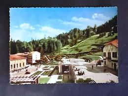VENETO - VICENZA - Vicenza