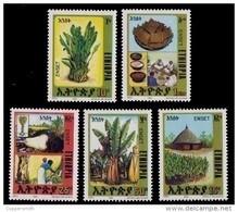 (356) Ethiopia / Ethiopie  Plants / Flora / Fruits / Bananas / Früchte / 1994 ** / Mnh  Michel 1477-81 - Ethiopia