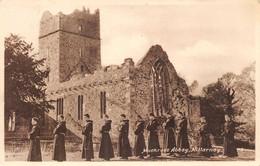 Killarney, Muckross Abbey - Kerry
