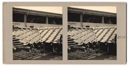 Stereo-Fotografie W. De S., Dachziegel Aus Eternit - Professions