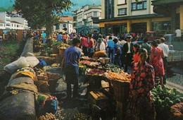 PORTUGAL - Madeira - FUNCHAL - Mercado Dos Lavradores - Marché Fruits Et Légumes - Fruit And Vegetable Market - Mercati