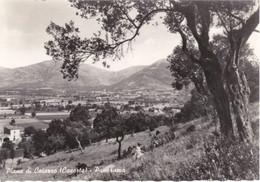 PIANA DI CAIAZZO - CASERTA - PANORAMA - 1967 - Caserta