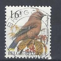 Ca Nr 2534 Brugge - 1985-.. Pájaros (Buzin)