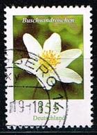 Bund 2019,Michel# 3472 R O Blumen: Buschwindröschen Mit Nr. 35 - [7] Repubblica Federale