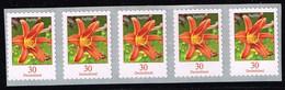 Bund 2020,Michel# 3516 ** Blumen: Taglilie, Selbstklebend Mit Nr. 3455  5000-er Rolle - [7] Repubblica Federale