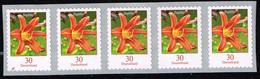Bund 2020,Michel# 3516 ** Blumen: Taglilie, Selbstklebend Mit Nr. 25  100-er Rolle - [7] Repubblica Federale