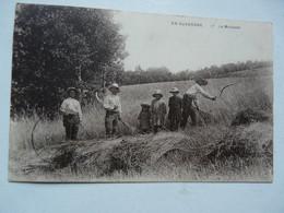 CPA EN AUVERGNE : La Moisson - Landwirtschaftl. Anbau
