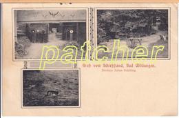 Bad Wildungen, Schießstand, Gelaufen 1932 - Bad Wildungen
