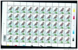 2007 STEENUIL CHOUETTE CHEVECHE 50T DU 08XI SERIE A....... P2222 - 1985-.. Pájaros (Buzin)