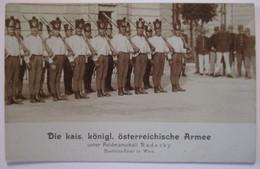 Österreich Armee Unter Radezky, Custozza (Italien) Feier Wien, Fotokarte (11776) - War 1914-18