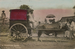 Real Photo Hand Colored  Transportation A Provincial Quiles Ox Cart . Sent From Jolo Moro To Watertown  Connecticut - Filippine
