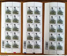2005 - 19 MARS BUZIN Mouette Rieuse    30 TIMBRES EN 3 FEUILLETS P - 2 - 3  - 4 - 1985-.. Birds (Buzin)