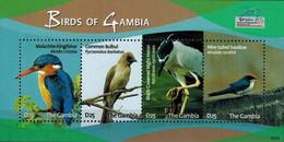 MDB-BK20-073-2 MINT ¤ GAMBIA 2009 SHEET ¤ BIRDS OF THE AFRICA OISEAUX BIRDS PAJAROS VOGELS VÖGEL - Parrots
