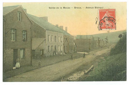 08 - VALLEE DE LA MEUSE - BRAUX Avenue Blanqui (carte Toilée...) - Otros Municipios