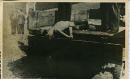 14574 -1946 POST MORTEM CORPS DE-  MAUTHAUSEN CAMP DE LA MORT  DE CONCENTRATION EXTERMINATION SHOAH  JEWISH GUERRE 39/45 - War 1939-45