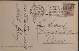 Napoli 1928 - Mosche E Zanzare Apportano Malattie Difendetevi Da Esse - Michetti C.20 - Storia Postale