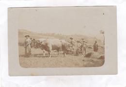 CARTE PHOTO :  VIUZ-en-SALLAZ  (Famille  Duchosal) - Other Municipalities