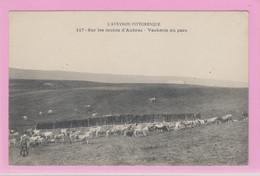 D12 - SUR LES MONTS D'AUBRAC - VACHERIE AU PARC - Grand Troupeau De Vaches - L'AVEYRON PITTORESQUE - Ohne Zuordnung