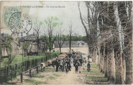 Saint Valéry Sur Somme : Un Coin Du Marché - Saint Valery Sur Somme