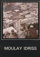 Carte Postale. Maroc. Moulay-Idriss. Ville Sainte. Vue Générale. Editions Jeff. Etat Moyen. Taches. - Islam