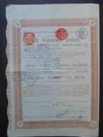 ANGLETERRE - LONDRES 1890 - LE CHAMP D'OR, FRENCH  MISGUND GOLD MINING CIE - ACTION DE 1£ - Hist. Wertpapiere - Nonvaleurs