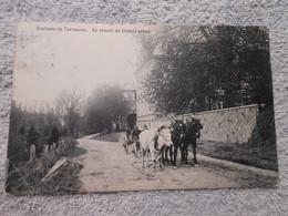 Cpa Tervuren En Venant Du Chemin Creux Attelage - Tervuren