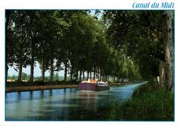 Le Canal Du Midi 1995  CPM Ou CPSM - Francia